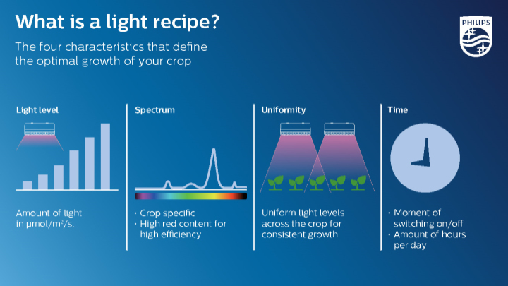 What is a light recipe?